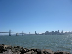 Curating on Treasure Island, San Francisco