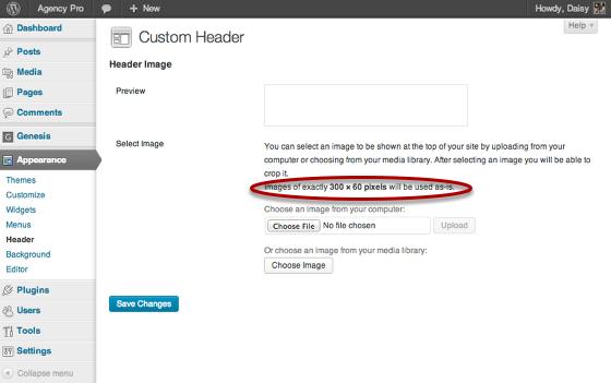 agency-pro-custom-header.png
